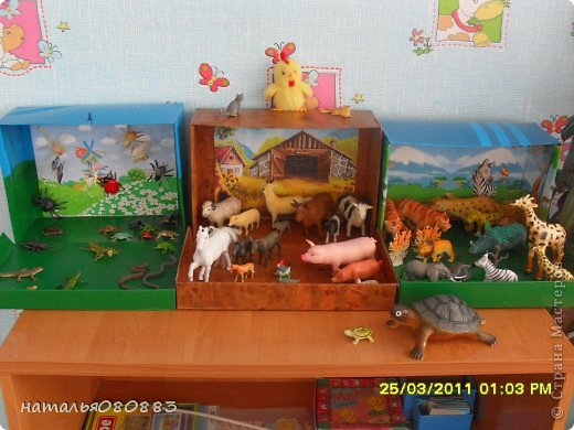 Уголки природы в детском саду оформление своими руками